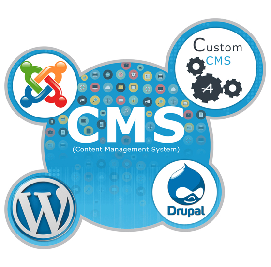 Top CMS Development Company in Jaipur INDIA